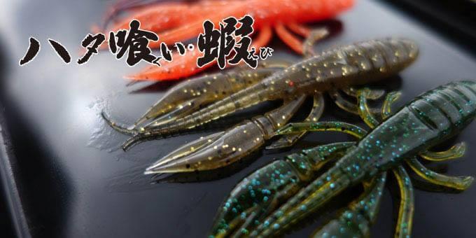 ハタ喰い・蝦